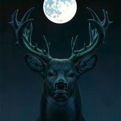 Deer MORE INFO